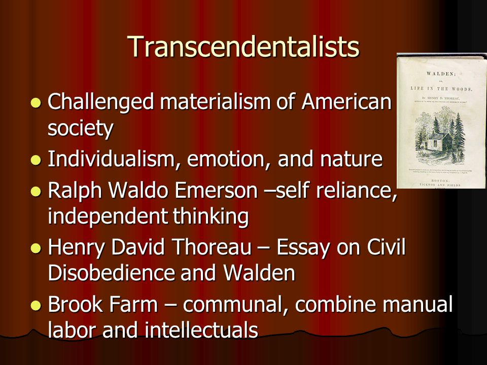 Transcendentalists Challenged materialism of American society