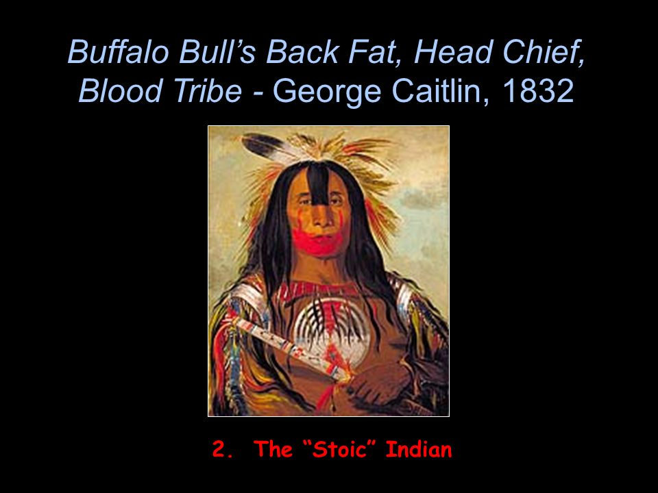 Buffalo Bull's Back Fat, Head Chief, Blood Tribe - George Caitlin, 1832