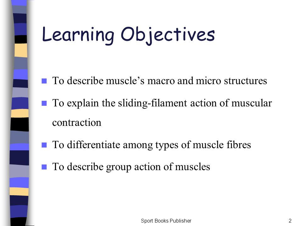Learning Objectives To describe muscle's macro and micro structures