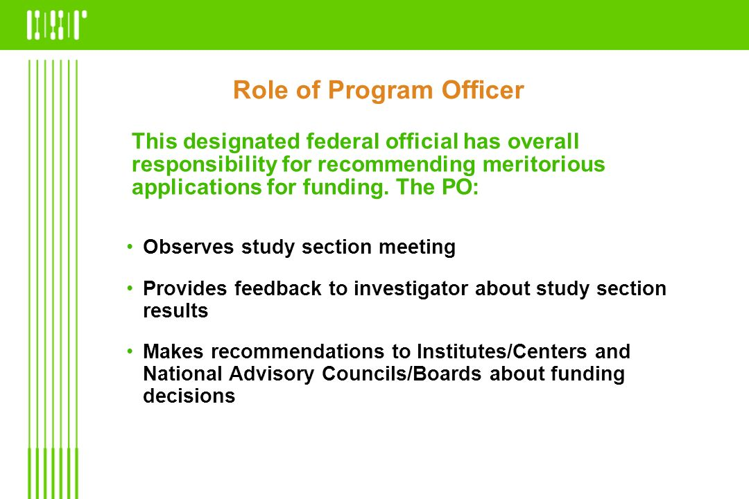 Role of Program Officer