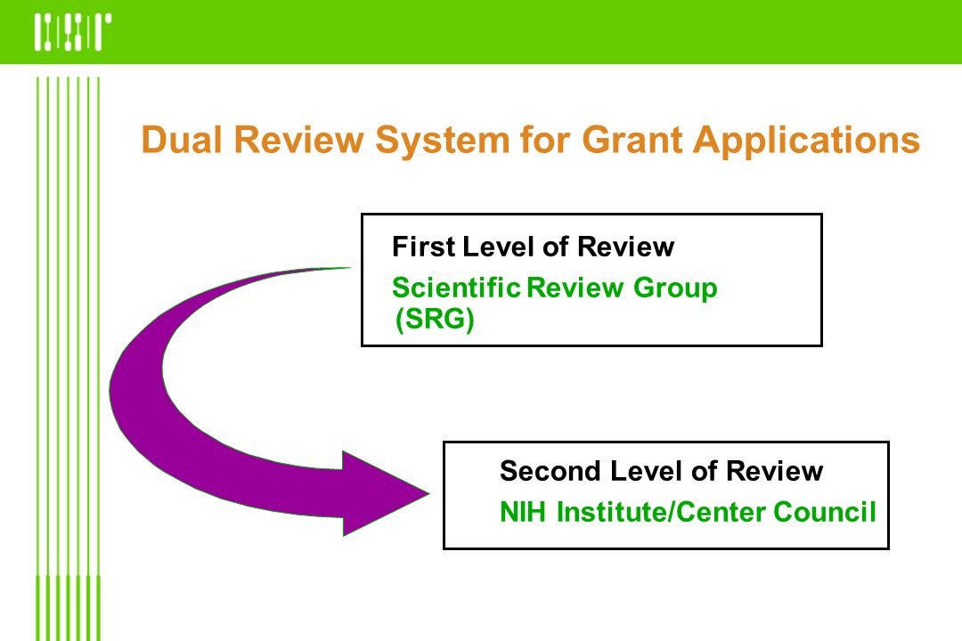 Dual Review System for Grant Applications