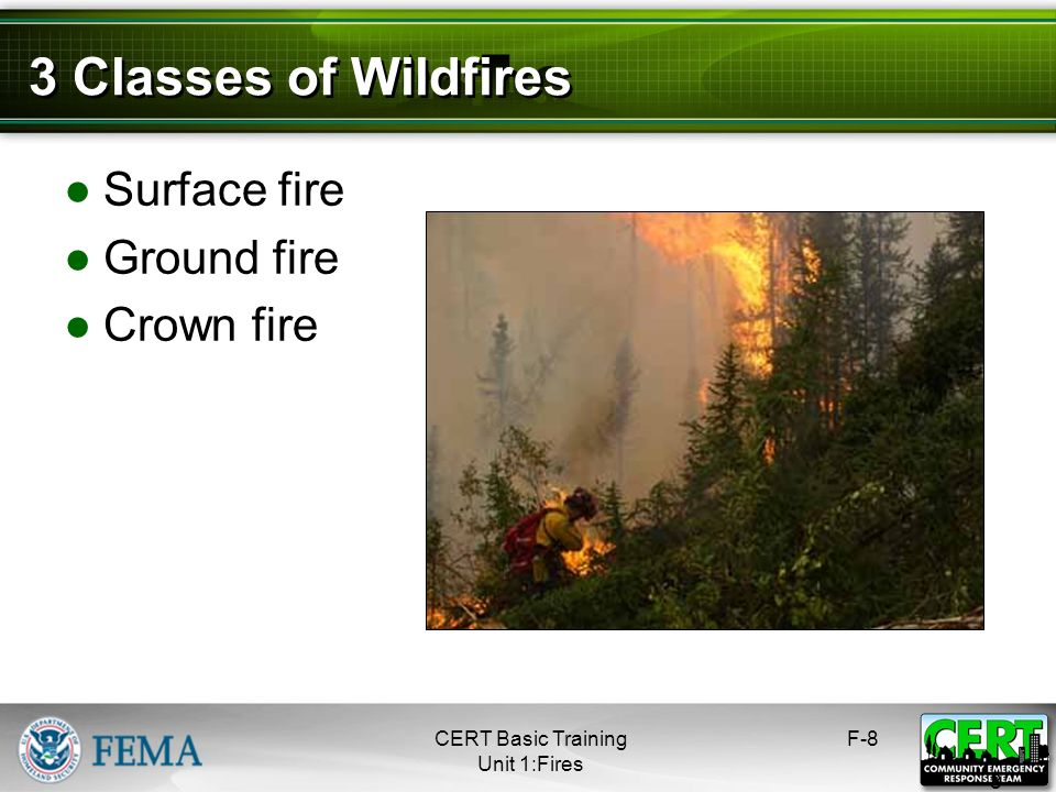 3 Classes of Wildfires Surface fire Ground fire Crown fire