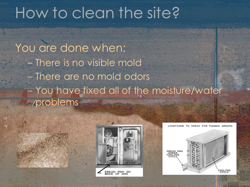 How to clean the site You are done when: There is no visible mold