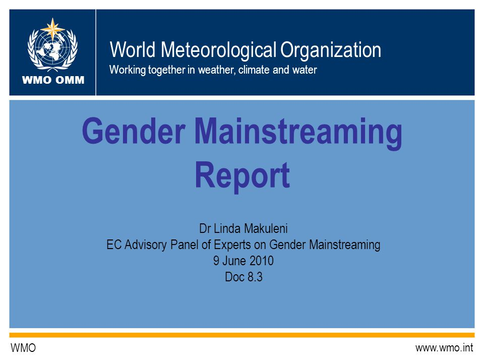 Gender Mainstreaming Report