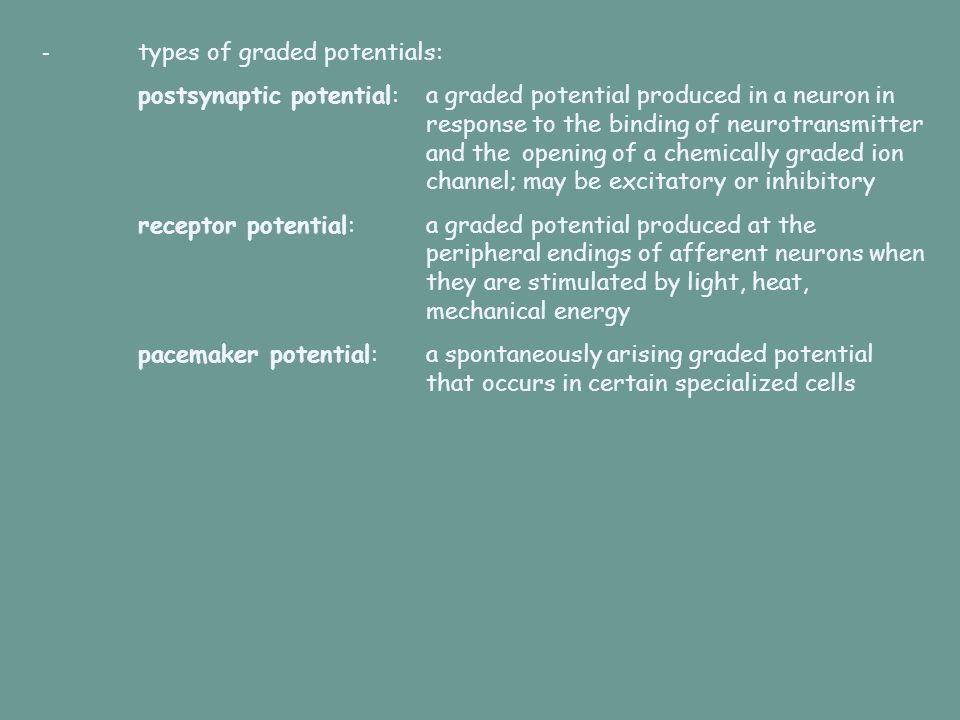 - types of graded potentials: