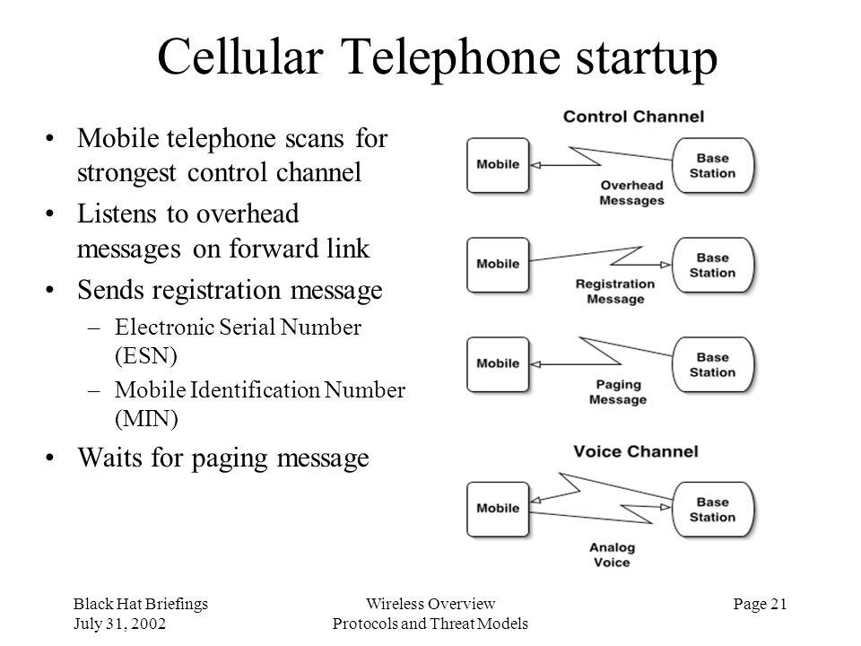 Cellular Telephone startup
