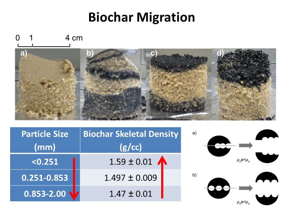 Biochar Skeletal Density