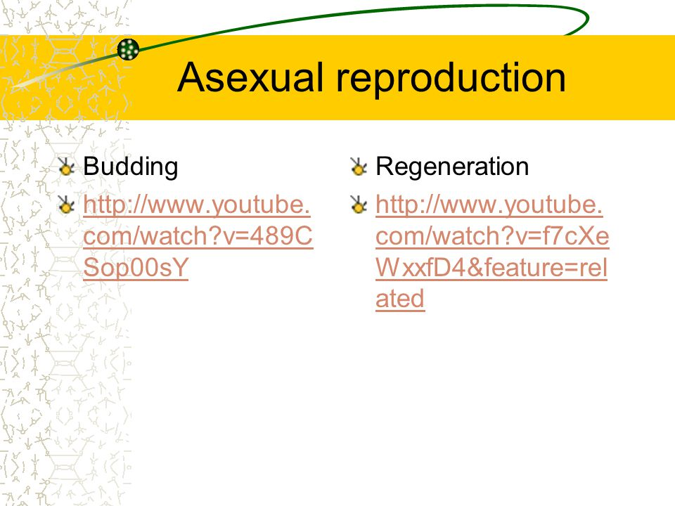 Interesting facts on asexual reproduction budding