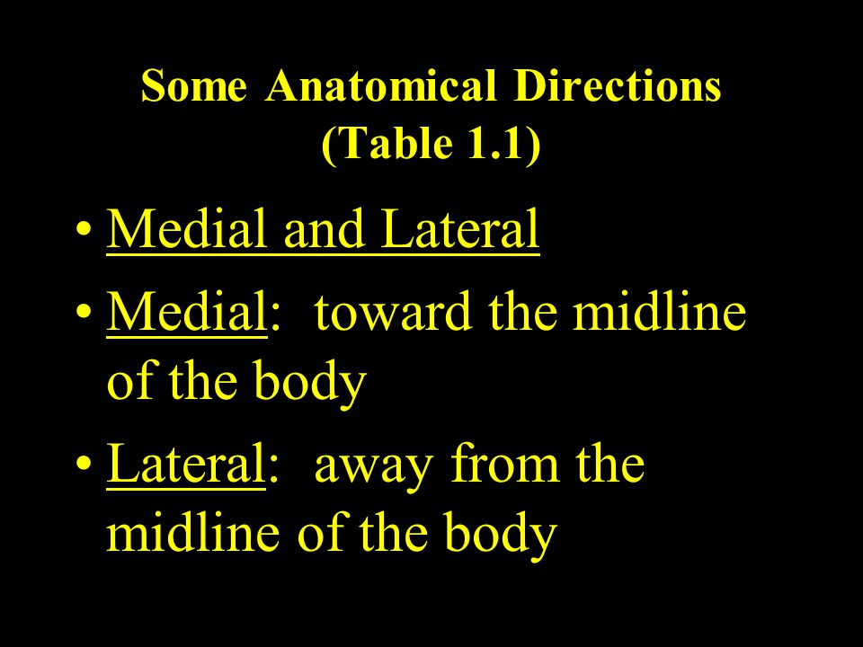 Some Anatomical Directions (Table 1.1)