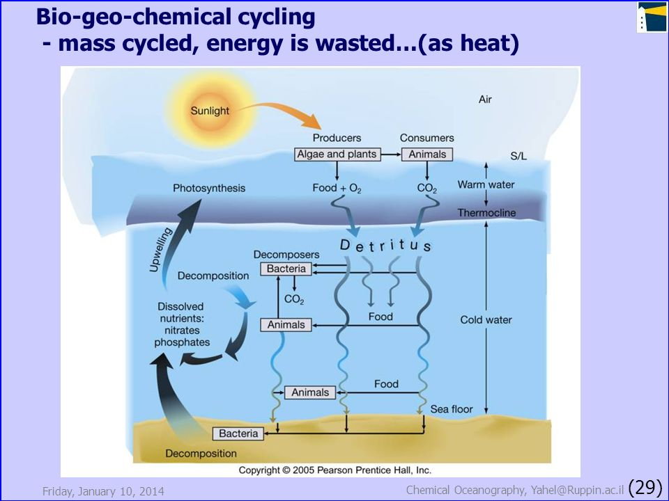 Bio-geo-chemical cycling - mass cycled, energy is wasted…(as heat)