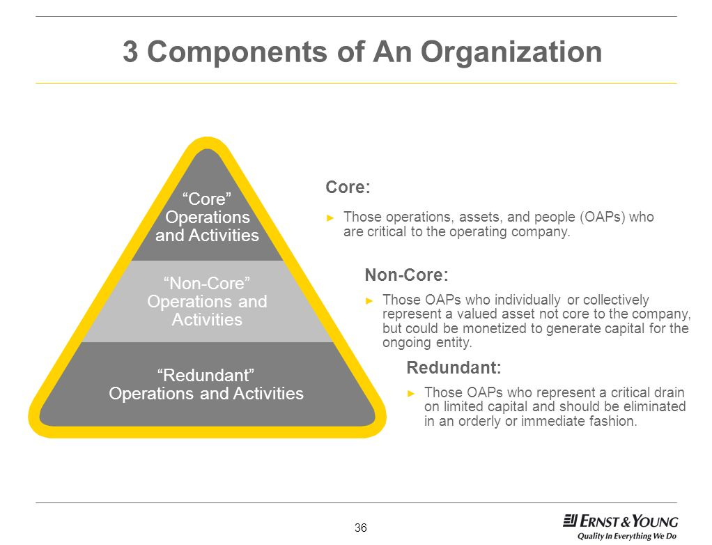 3 Components of An Organization