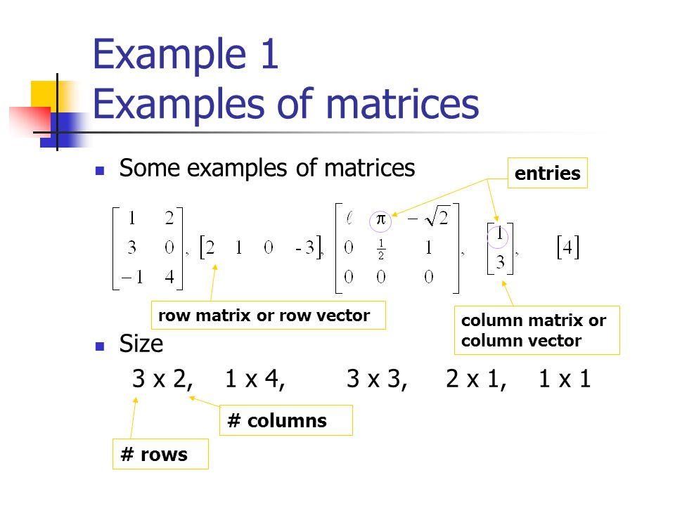 Example 1 Examples of matrices