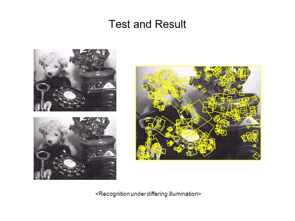 Test and Result <Recognition under differing illumination>
