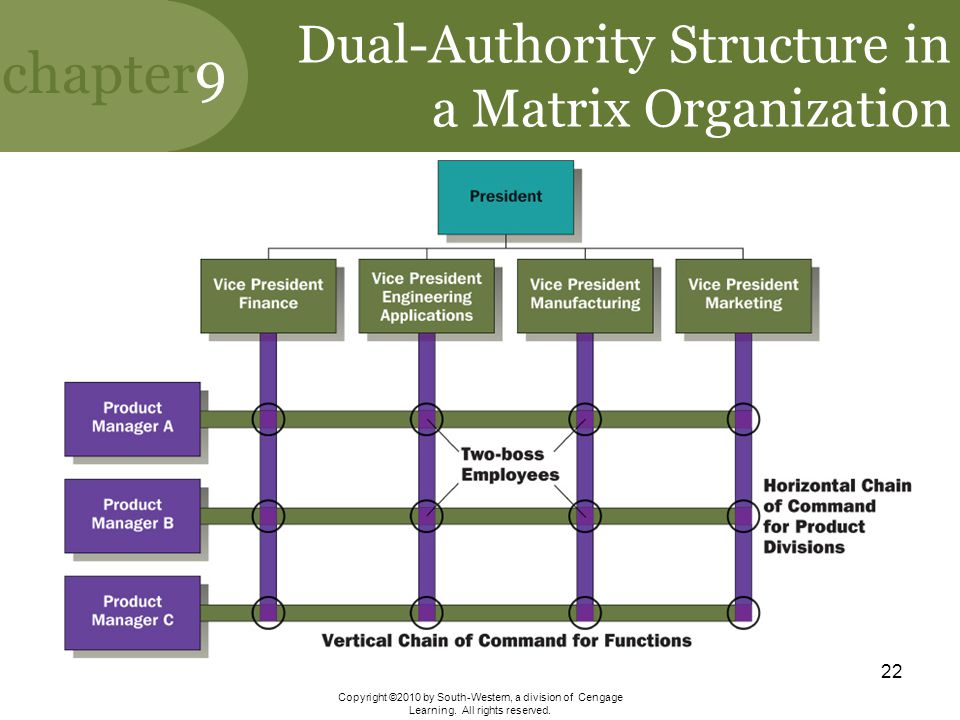 Dual-Authority Structure in a Matrix Organization