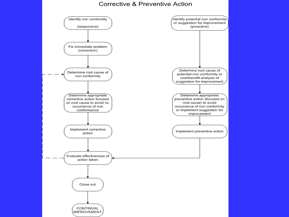 This shows a flowchart of the corrective and preventive action process