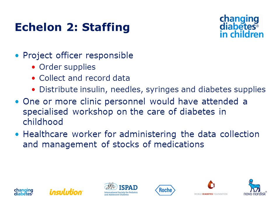 Echelon 2: Staffing Project officer responsible