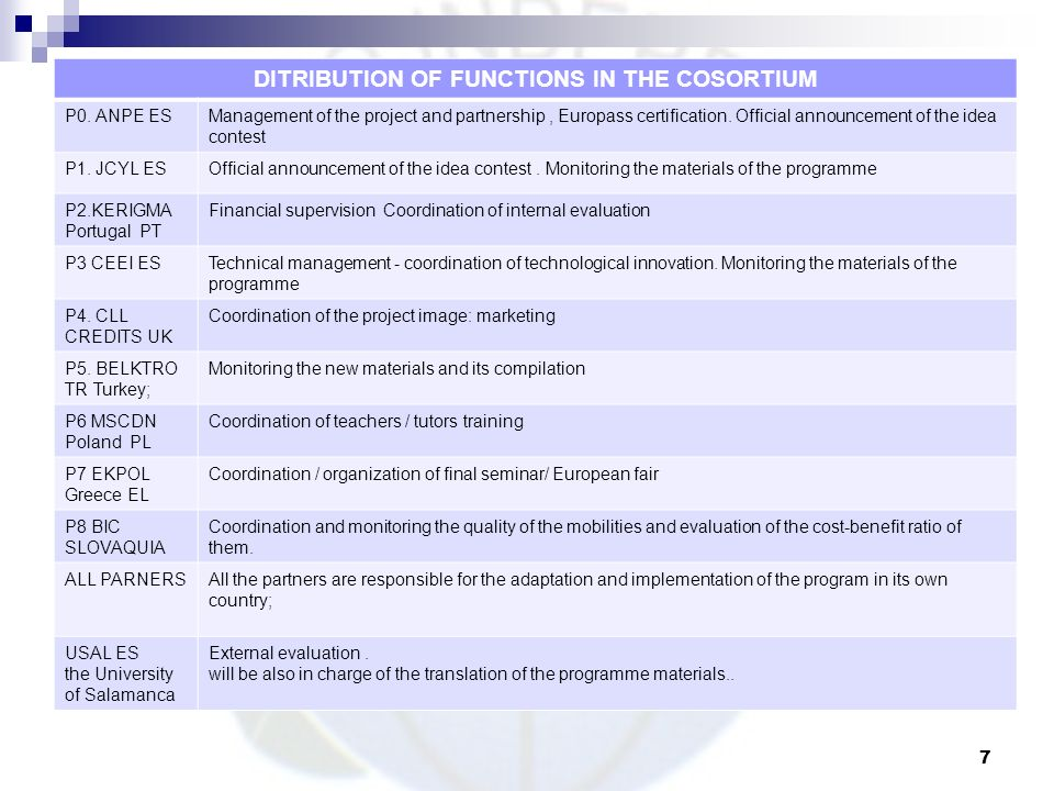 DITRIBUTION OF FUNCTIONS IN THE COSORTIUM