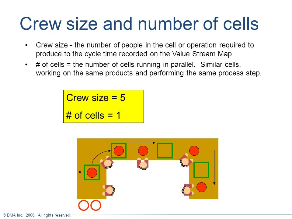 Crew size and number of cells