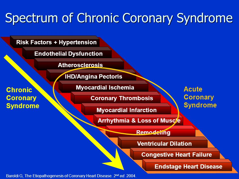 Spectrum of Chronic Coronary Syndrome