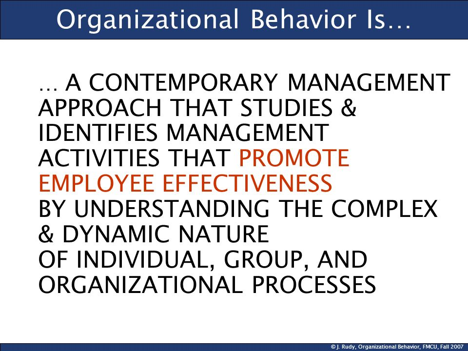 Organizational Behavior Is…