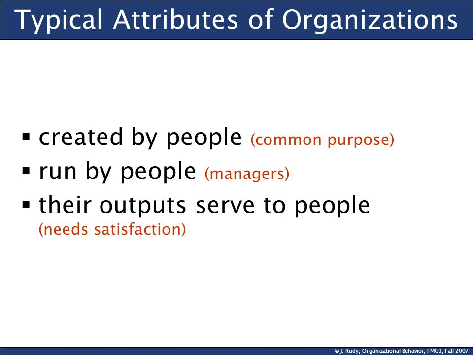 Typical Attributes of Organizations