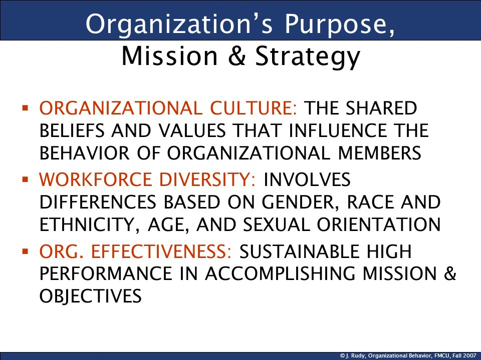 Organization's Purpose, Mission & Strategy