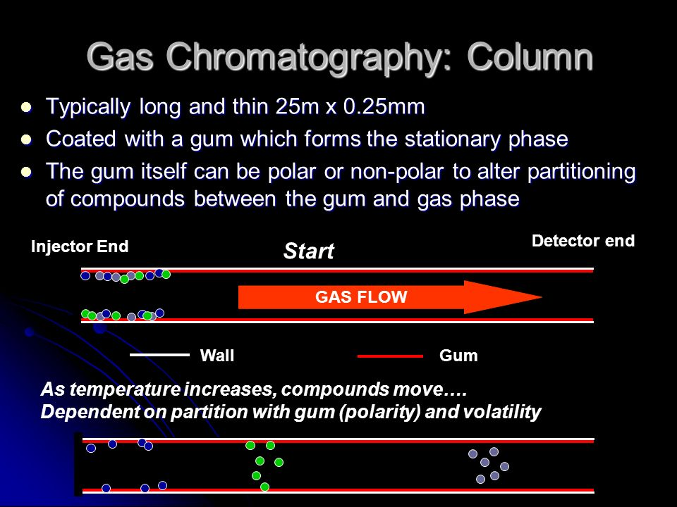 Gas Chromatography: Column