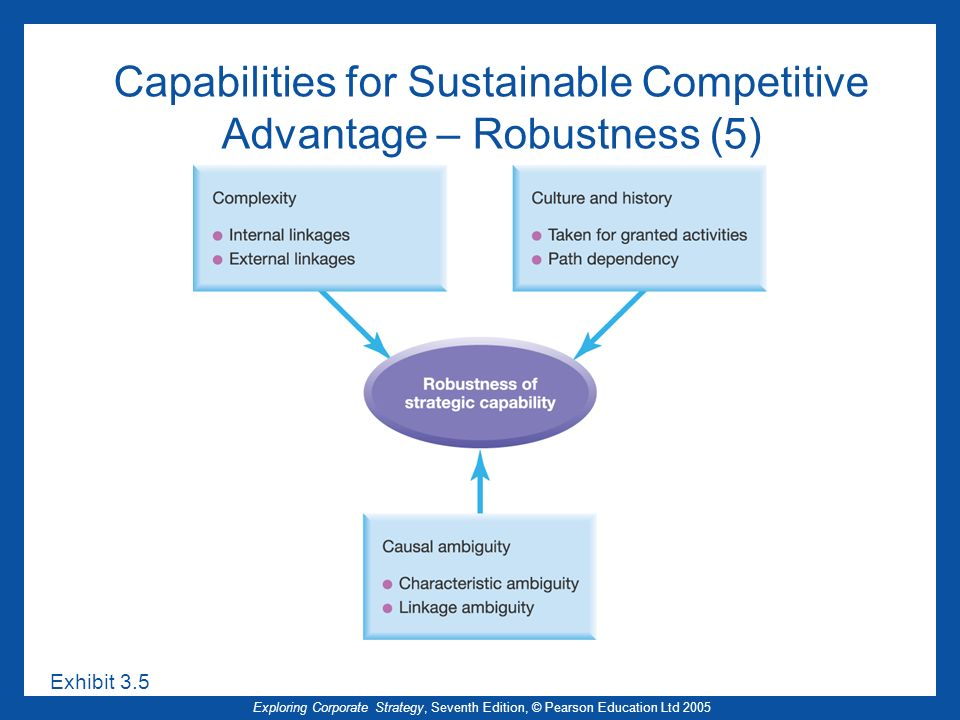 Capabilities for Sustainable Competitive Advantage – Robustness (5)