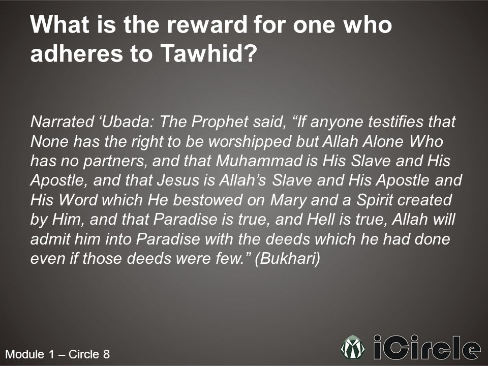 What is the reward for one who adheres to Tawhid