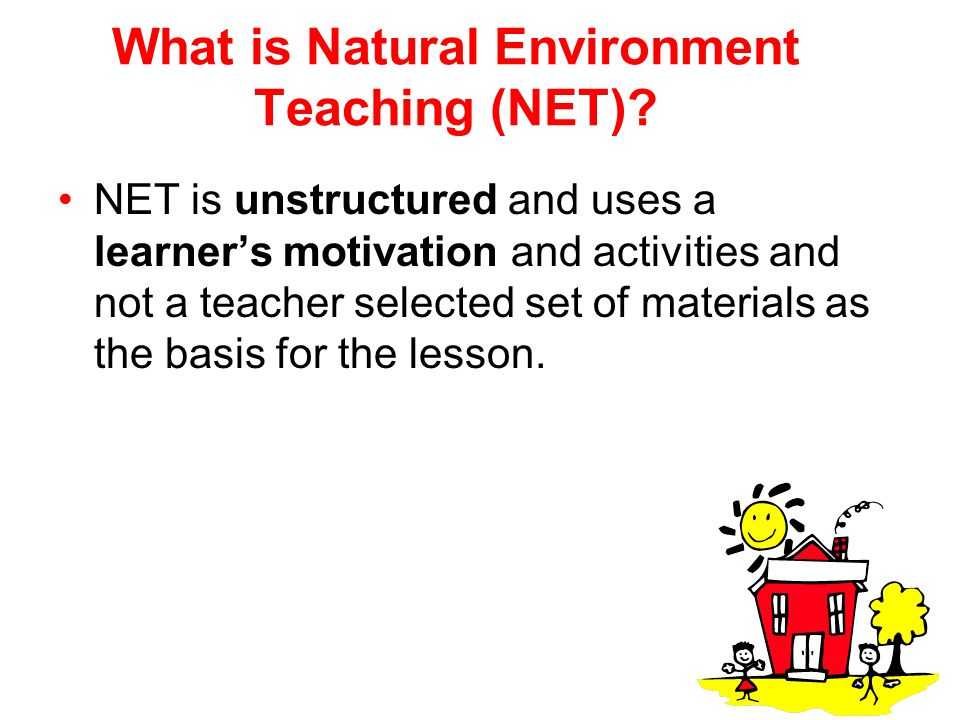 What is Natural Environment Teaching (NET)