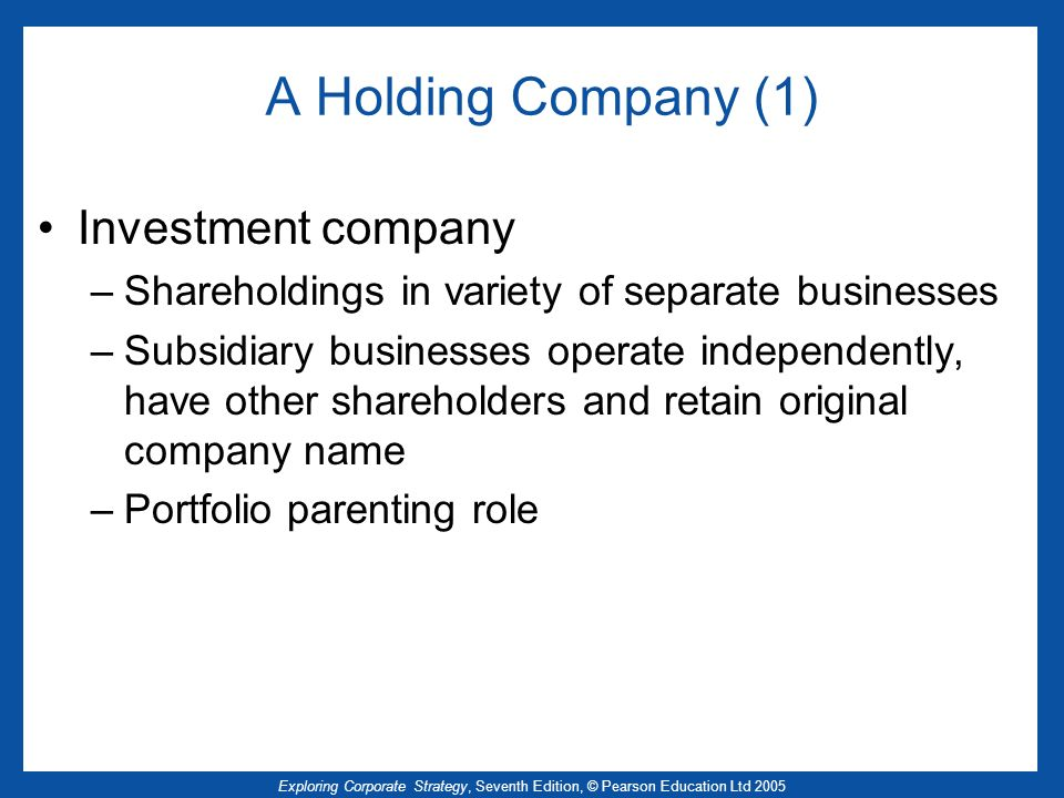A Holding Company (1) Investment company