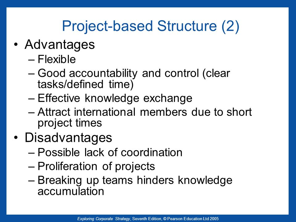 Project-based Structure (2)