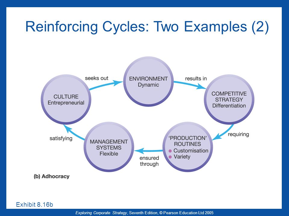 Reinforcing Cycles: Two Examples (2)