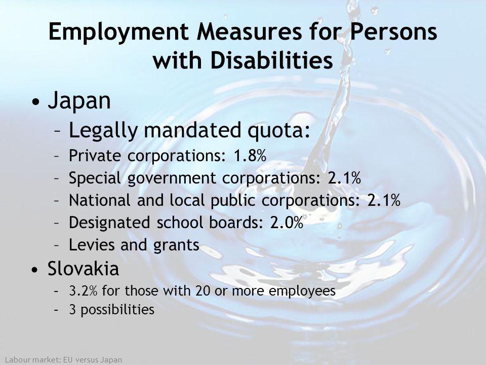 Employment Measures for Persons with Disabilities