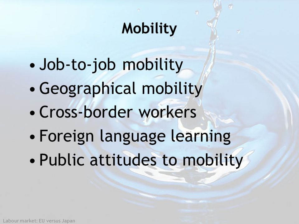 Geographical mobility Cross-border workers Foreign language learning