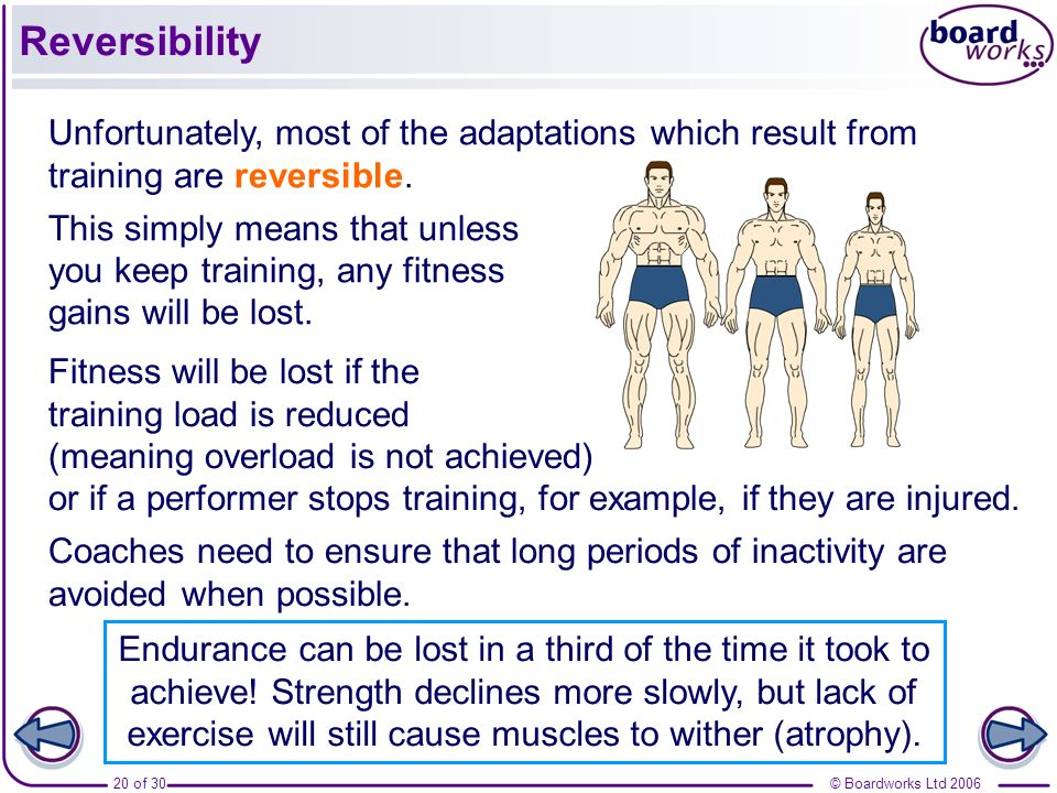 Reversibility Unfortunately, most of the adaptations which result from training are reversible.