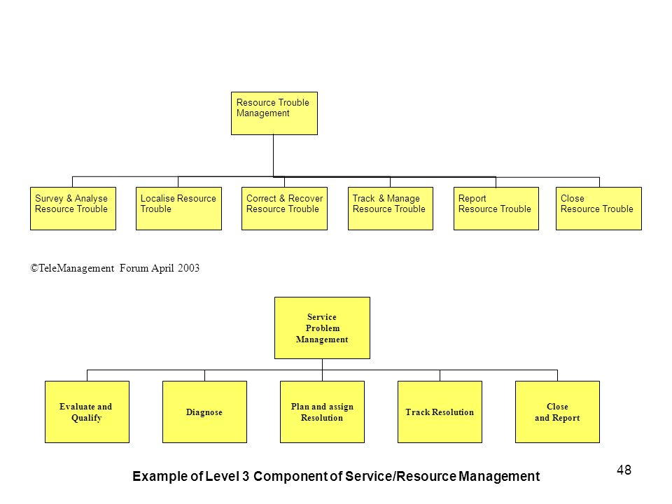 Example of Level 3 Component of Service/Resource Management