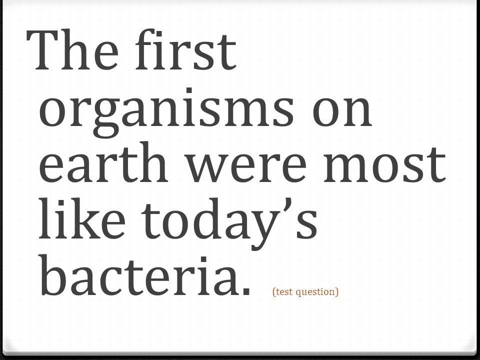 The first organisms on earth were most like today's bacteria
