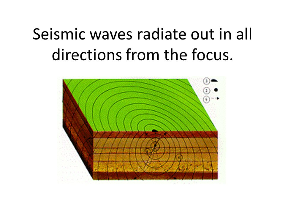 Seismic waves radiate out in all directions from the focus.