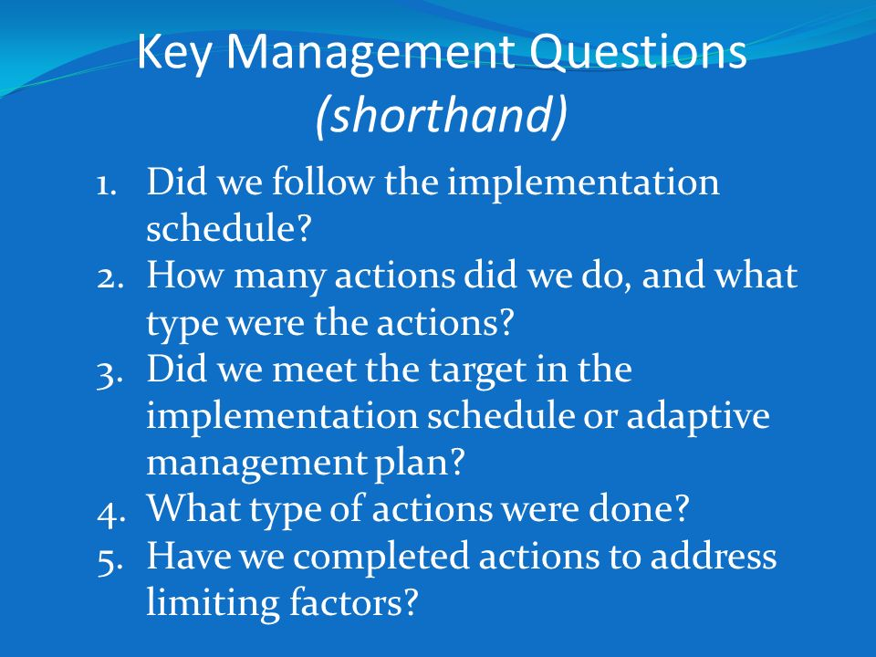Key Management Questions (shorthand)