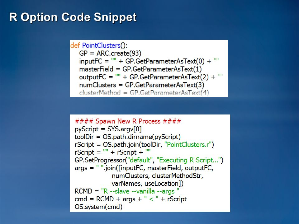 R Option Code Snippet
