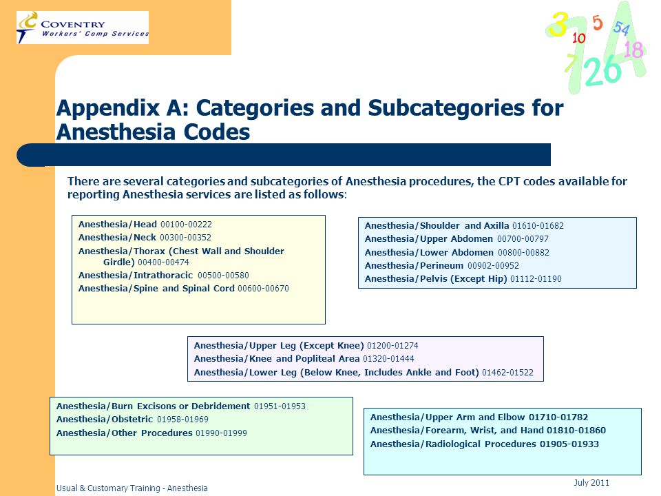 Appendix A: Categories and Subcategories for Anesthesia Codes
