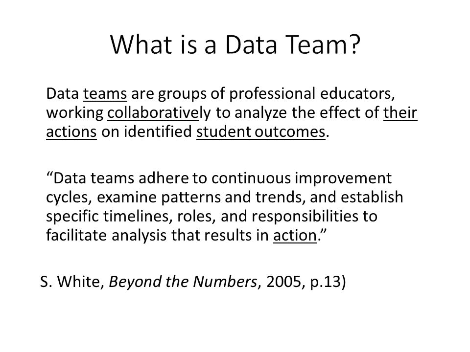 What is a Data Team