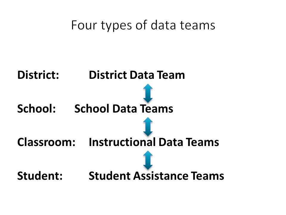 Four types of data teams