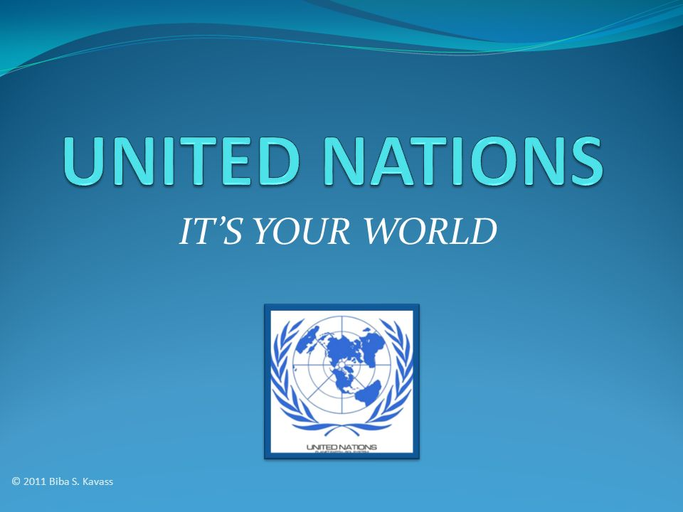 UNITED NATIONS IT'S YOUR WORLD © 2011 Biba S. Kavass
