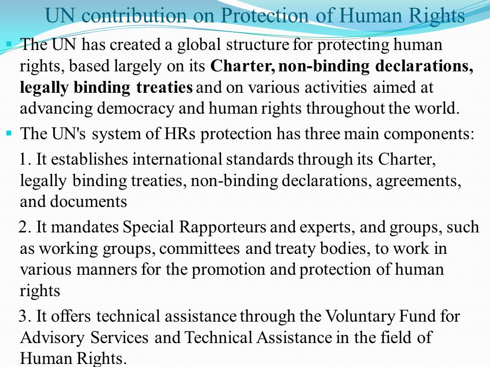 UN contribution on Protection of Human Rights