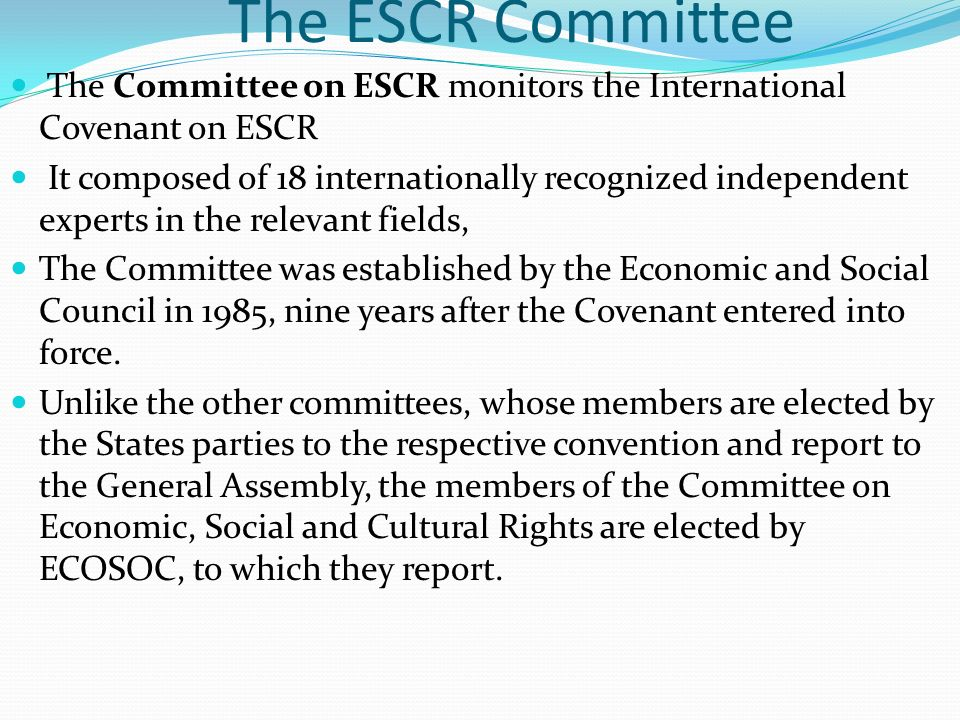 The ESCR Committee The Committee on ESCR monitors the International Covenant on ESCR.
