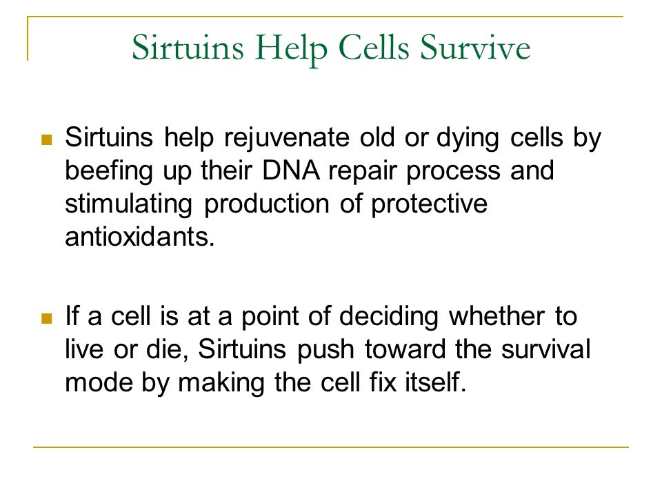 Sirtuins Help Cells Survive