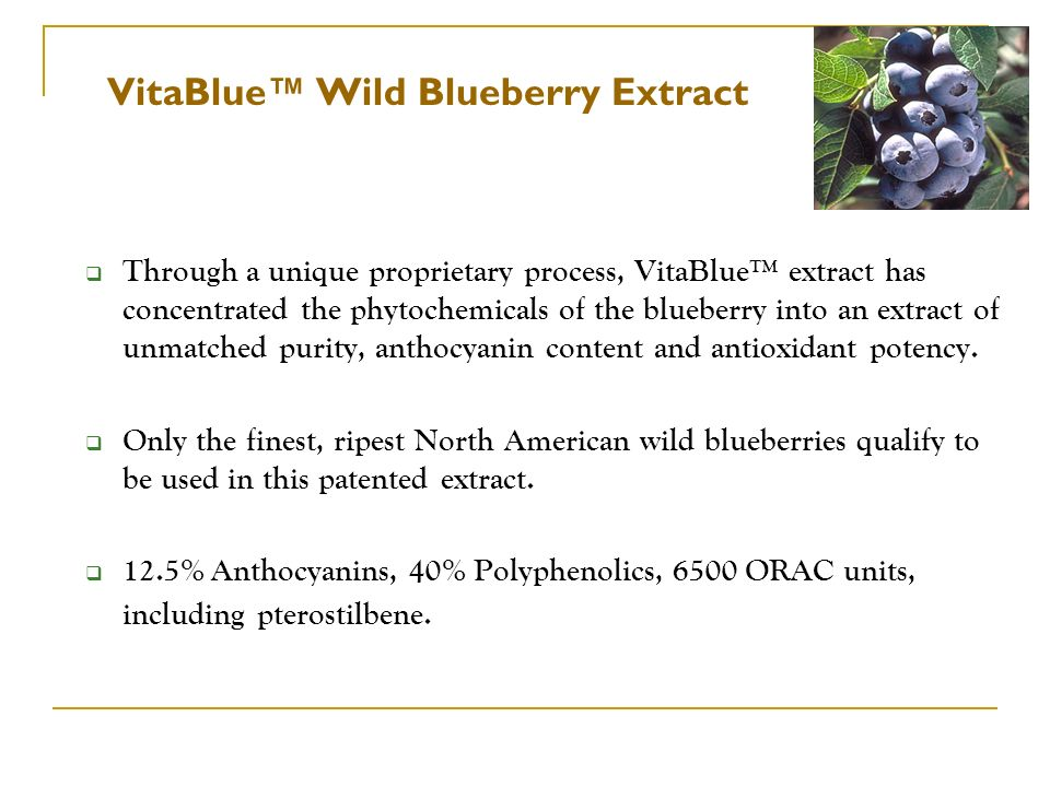 VitaBlue™ Wild Blueberry Extract