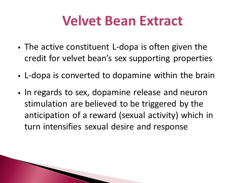 Velvet Bean Extract The active constituent L-dopa is often given the credit for velvet bean's sex supporting properties.
